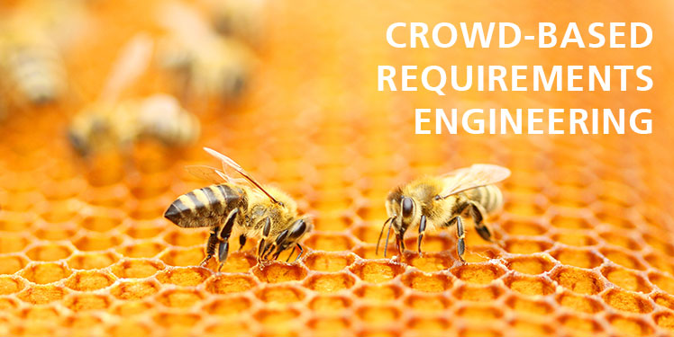 Fraunhofer IESE Crowd-Based Requirements Engineering