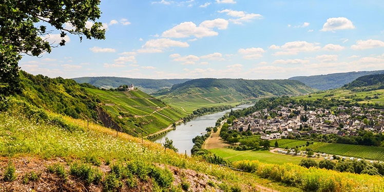 Fraunhofer IESE - Digitale Ökosysteme für ländliche Regionen