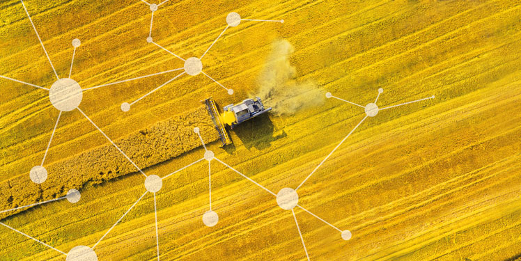 Fraunhofer IESE - Cognitive Agriculture und Smart Farming