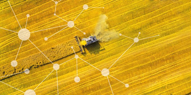 Fraunhofer IESE - Cognitive Agriculture und Smart Farming