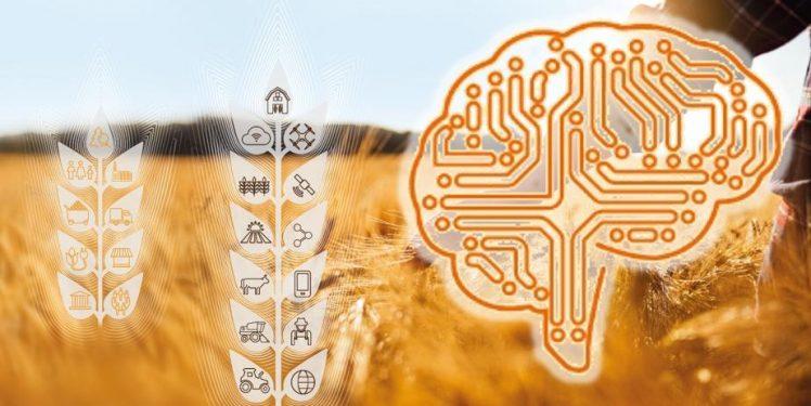 Fraunhofer IESE - Künstliche Intelligenz (KI ) und digitale Transformation in der Landwirtschaft